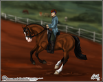 BSTC - Armand - Dressage 2 by Baringa-of-the-Wind