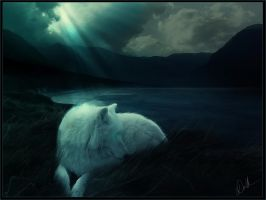 far from lonely by dasha-v-m