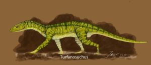 TURFANOSUCHUS by A2812