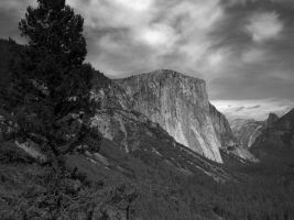 Yosemite by jccowles