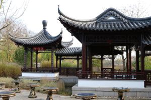 Chinese garden Stock 20 by Malleni-Stock