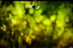 X-treme bokeh wallpaper by X-chromosome
