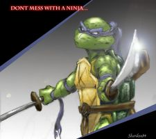 Dont mess with a NINJA by Shuriken84