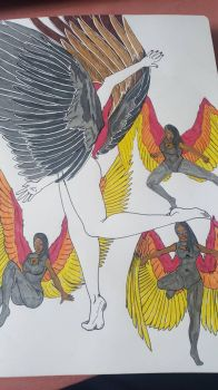 Study of winged girls (more of them) by GreyCore