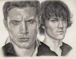 Supernatural - Dean and Sam by Sofera