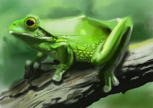 Painting Study - Green Frog by litterbugger