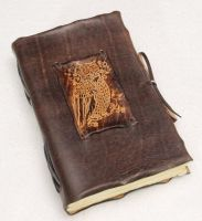 Wild Owl Leather Notebook by gildbookbinders