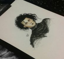 Edward Scissorhands ( johnny depp ) by MonalisaBorges