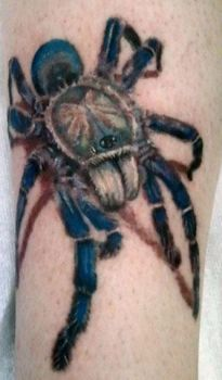 Blue tarantula tattoo by ShawnMahaffey