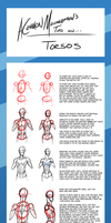 ACommonMisconception's Tips: Torsos by ACommonMisconception