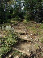 Dirt Path by LucieG-Stock