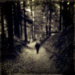 CCV. ..in the woods by behherit