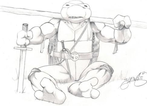 ninja turtle by booger626