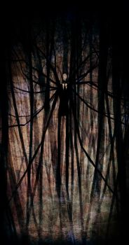 The Slender Man by Pirate-Cashoo