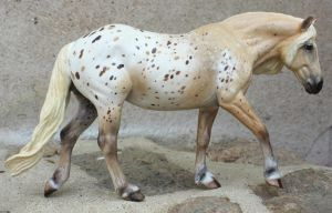 CM Breyer Haflinger mare to palomino appy by arcadian7