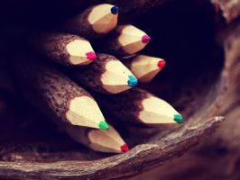 Woodsy Pencils by hourglass-paperboats