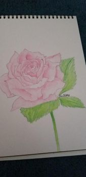 Color Shaded Rose by KeKitty