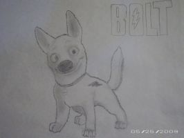 My first Bolt by acefighter028