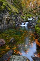 In the Stream of Seasons by MaximeDaviron