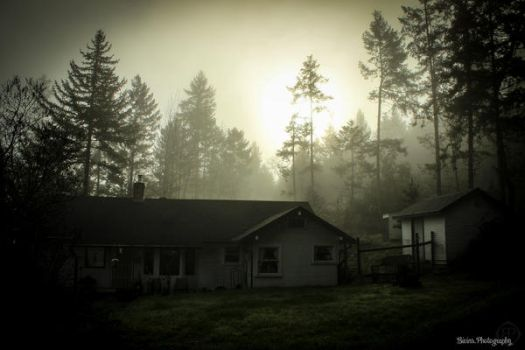 Home in the woods by BivinsPhotography