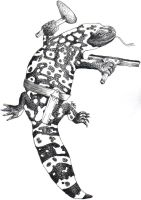 The Washing Gila monster by immortalcancer