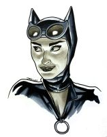 Selina Kyle by quin-ones