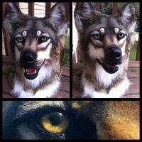 Teeth wolf preview by Sharpe19