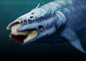 CombWhale by draconicaeaeon