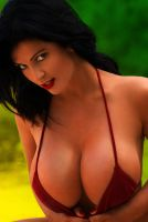Denise Milani by winchester01