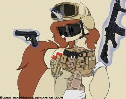 MLP: FIM OC Desert Storm: Equestrian Marine Corps by EquestrianMarine