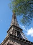 Tower and a  tree by Cyklopi