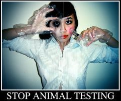 Against Animal Testing. by plasticxperfection