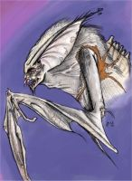 Anthropomorpha Bat Creature by BunnyBennett