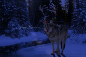 Rudolf the Wolf by raqinq