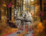 A Ride Through the Woods by Sangelus