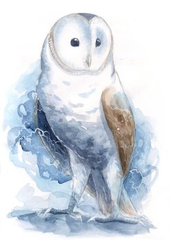 Watercolor Barn Owl by ThreeLeaves