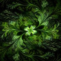 Feather Fern by mario837