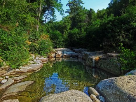 natural swimming pool by seianti