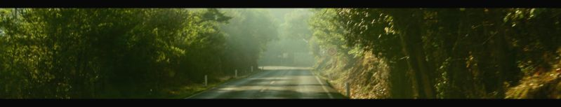 The Fog Leads Forgetfulness by yeriphot