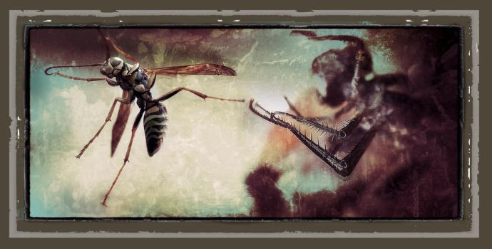 The Creation of Wasp by richardcgreen