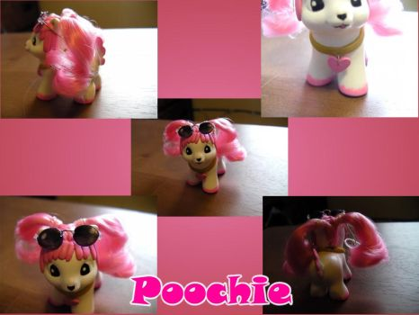 Poochie Pony by ZarineBashire