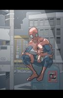 night time Spiderman by chris-gooding