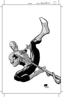Spiderman by Roger-Robinson