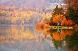 colorfull fall by Shadows-in-Twilight
