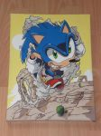 Sonic the Hedgehog Canvas ~finished~ by Stormrina