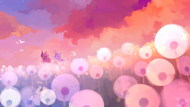 Dandelion Field by splashamantha