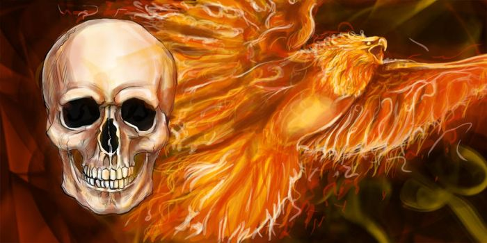 phoenix and a skull by narure