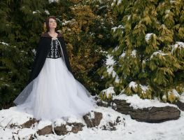 Ice queen stock 139 by Random-Acts-Stock