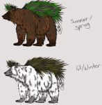 PineBear contest entry by OpalPeony