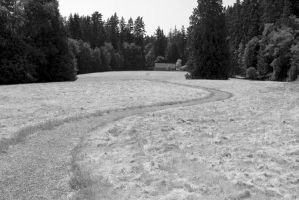 The Winding Path by Dustspots